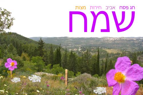 passover-spring