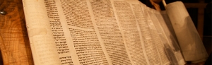 Torah_Feature